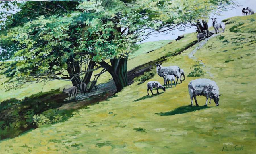 Hillside landscape with sheep. . £